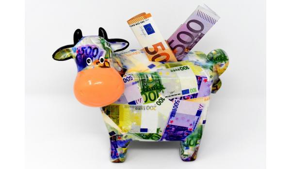 spaarpot koe met geld